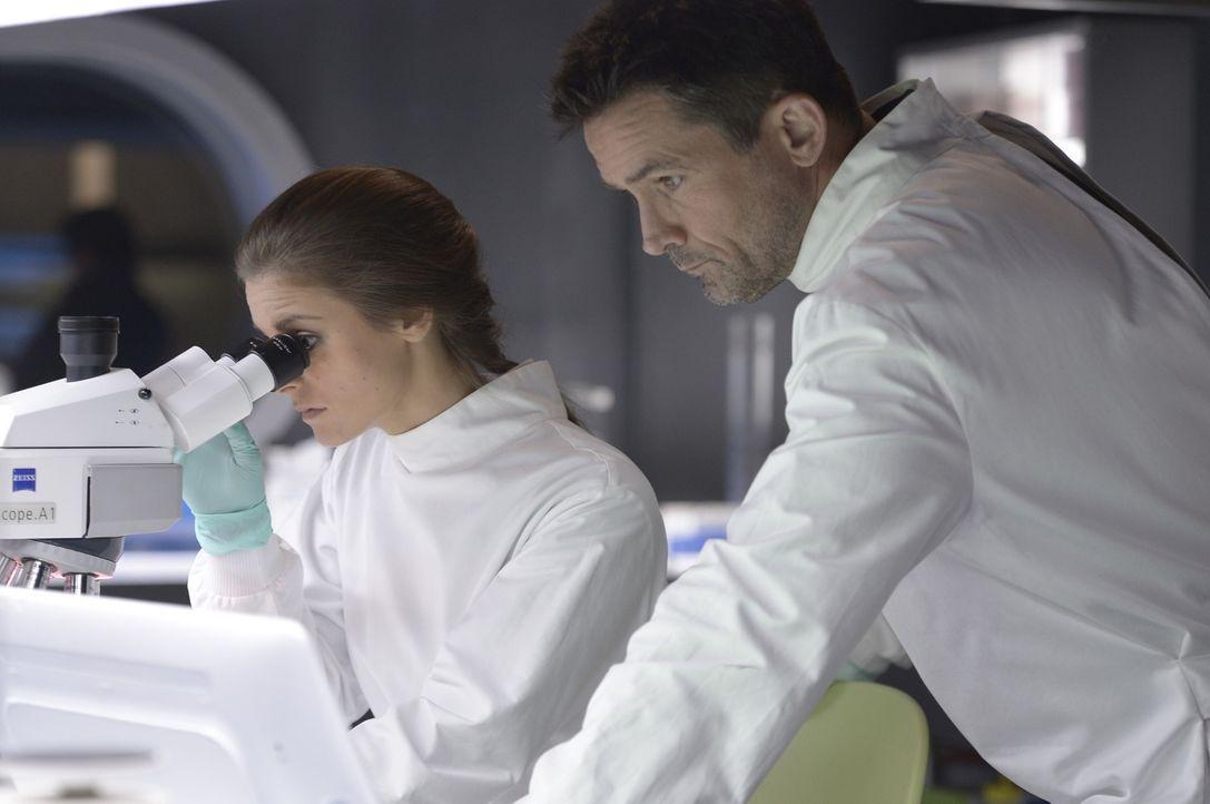 Während Sarah (Jordan Hayes, l.) und Alan (Billy Campbell, r.) unermüdlich nach einem Heilmittel forschen, entscheidet sich Hatake auf der Ebene R d... - Bildquelle: 2014 Sony Pictures Television Inc. All Rights Reserved.