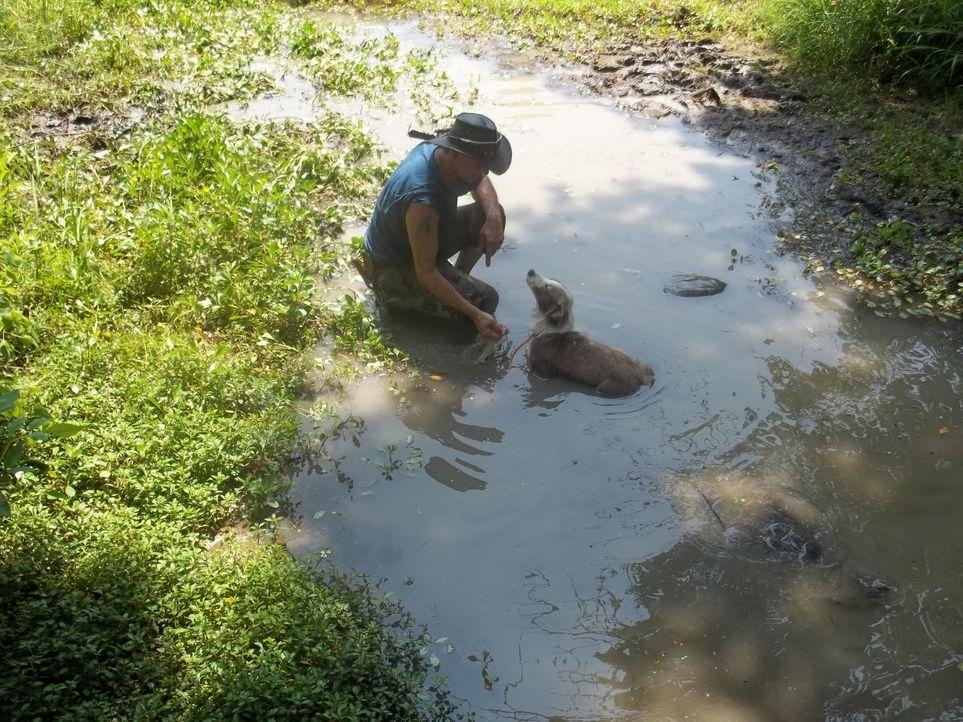 Auf seine Hündin Lolly kann sich der Schildkröten-Mann Ernie Brown Jr. immer verlassen ... - Bildquelle: Discovery Communications