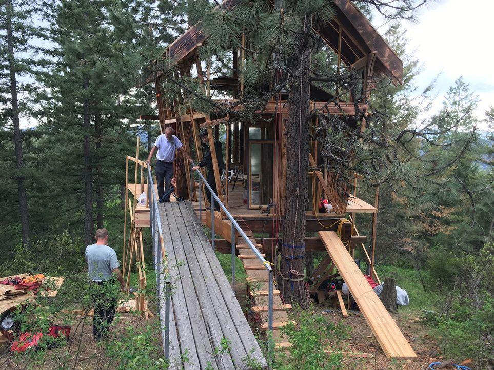 Eine Menge Arbeit steht den Baumhaus-Männern dieses Mal in Idaho bevor: Lynn und ihr Mann Andrew, die durch ihre Jobs oft gestresst und viel unterwe... - Bildquelle: 2016,DIY Network/Scripps Networks, LLC. All Rights Reserved