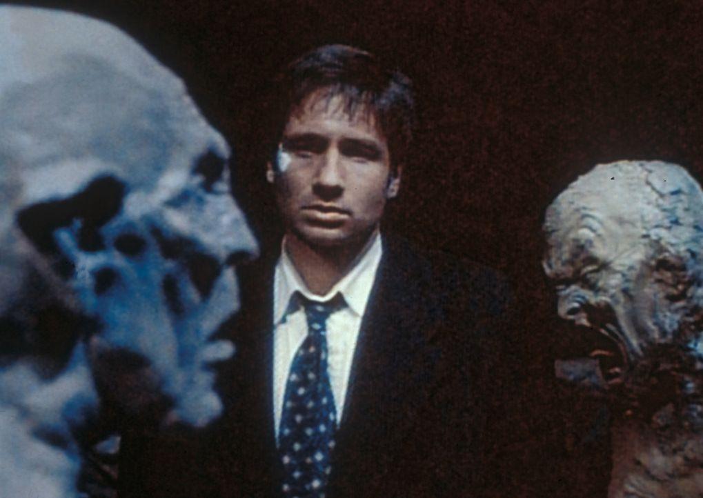 Mulder (David Duchovny) steht fassungslos vor Teufelsfratzen, die ein Serienmörder aus Ton geschaffen hat und hinter denen sich die Schädel seiner O... - Bildquelle: TM +   2000 Twentieth Century Fox Film Corporation. All Rights Reserved.