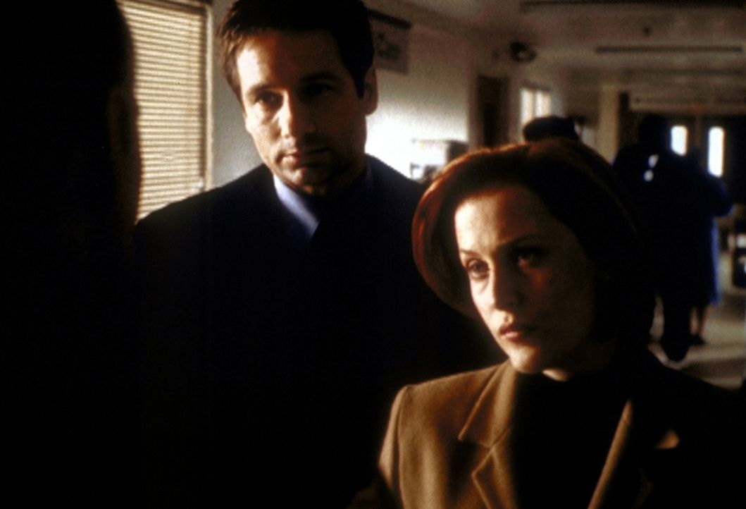Mit Sheriff Harden (Tom Bower, l.) haben es Scully (Gillian Anderson, r.) und Mulder (David Duchovny, M.) nicht leicht. - Bildquelle: TM +   2000 Twentieth Century Fox Film Corporation. All Rights Reserved.