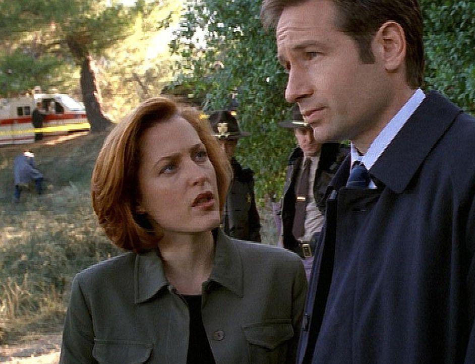 Als sich vier ehemalige FBI-Agenten innerhalb eines halben Jahres das Leben nehmen und ihre Leichen anschließend aus den Gräbern verschwinden, reche... - Bildquelle: TM +   2000 Twentieth Century Fox Film Corporation. All Rights Reserved.