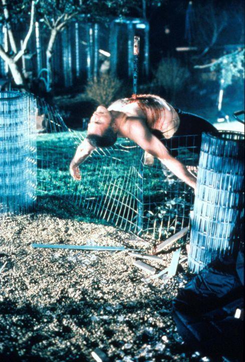 Von einem chinesischen Frachter ist ein Tier entkommen, das allem Anschein nach mehrere Menschen getötet hat. - Bildquelle: TM +   2000 Twentieth Century Fox Film Corporation. All Rights Reserved.