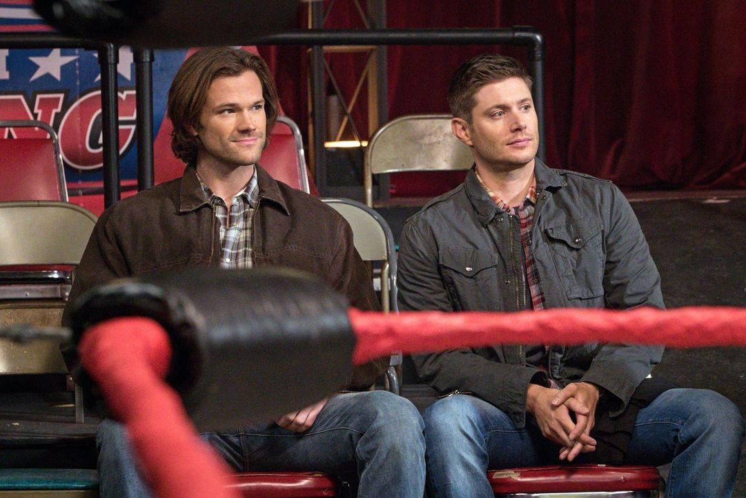 Sam (Jared Padalecki, l.) und Dean (Jensen Ackles, r.) müssen in der Wrestler-Szene einen neuen Fall aufklären, während Crowley unerwarteten Zuspruc... - Bildquelle: 2014 Warner Brothers