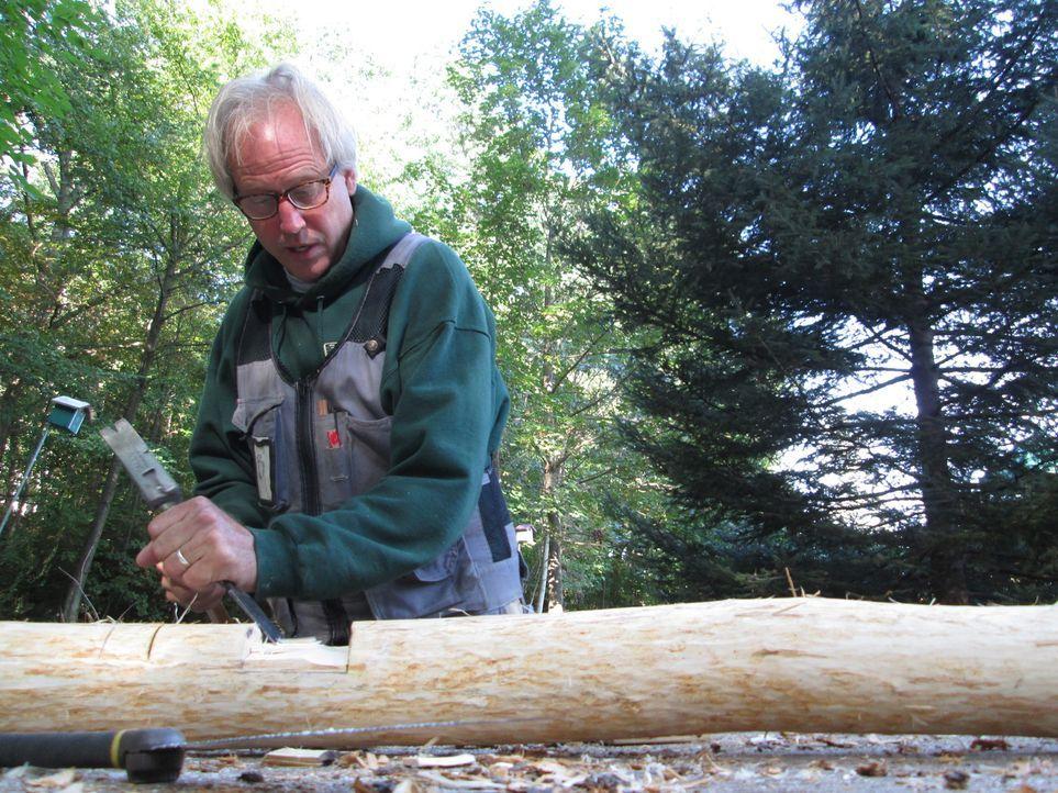 Baumhaus-Designer B'fer gab sein Studium auf, um seiner Leidenschaft dem Baumhaus-Bauen nachzukommen und so Kindern mit Behinderungen einen riesen T... - Bildquelle: 2016, DIY Network/Scripps Networks, LLC. All Rights Reserved.