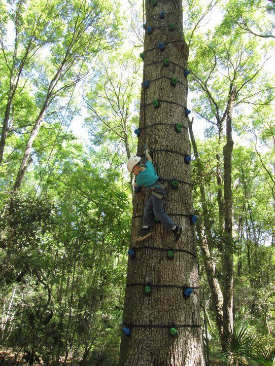 Seit Jahren träumt Sara in Florida von einem spektakulären Baumhaus auf ihrem Feriengrundstück. Die kreativen Baumhaus-Helden lassen sich das natürl... - Bildquelle: 2016,DIY Network/Scripps Networks, LLC. All Rights Reserved.