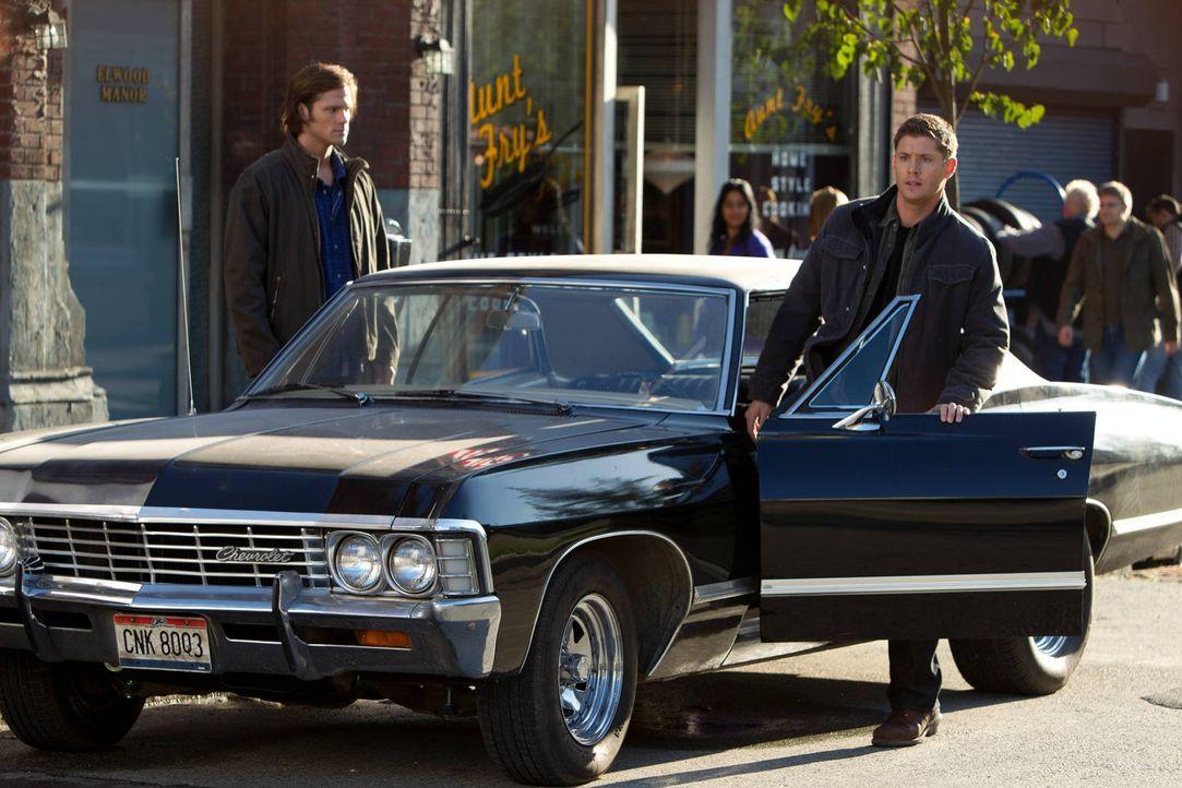 Machen eine ganz besondere Entdeckung: Sam (Jared Padalecki, l.) und Dean (Jensen Ackles, r.) ... - Bildquelle: Warner Bros. Television