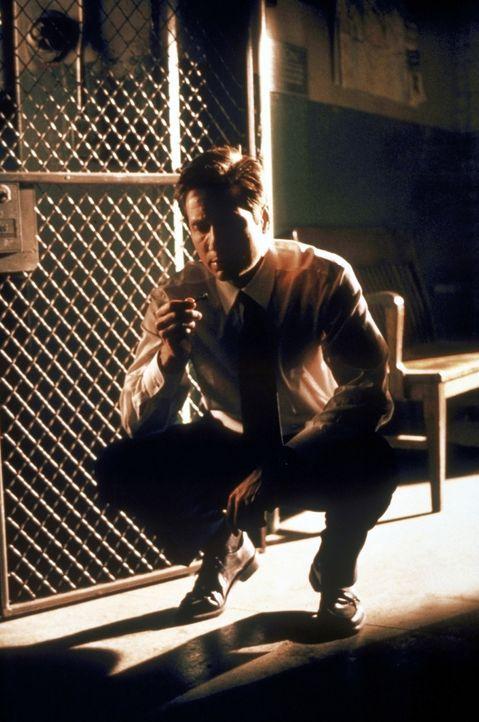 Mulder (David Duchovny) entdeckt ein mysteriöses Beweisstück. - Bildquelle: TM +   2000 Twentieth Century Fox Film Corporation. All Rights Reserved.