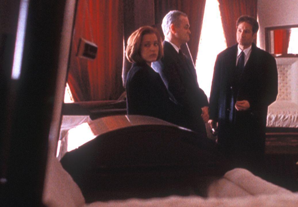 Mulder (David Duchovny, r.) und Scully (Gillian Anderson, l.) sind erstaunt, in einem kleinen Ort mit knapp 400 Einwohnern das größte Sarglager von... - Bildquelle: TM +   2000 Twentieth Century Fox Film Corporation. All Rights Reserved.