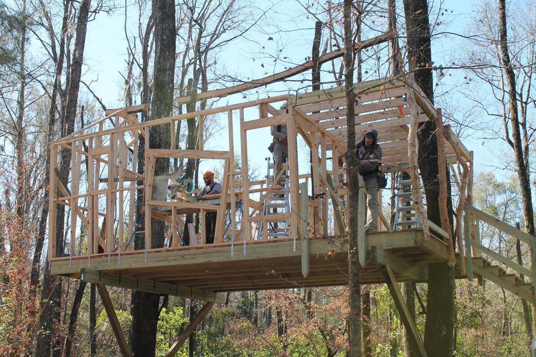 Die Treehouse Guys erfüllen jeden noch so verrückten Baumhaus-Traum ... - Bildquelle: 2015, DIY Network/Scripps Networks, LLC. All Rights Reserved.