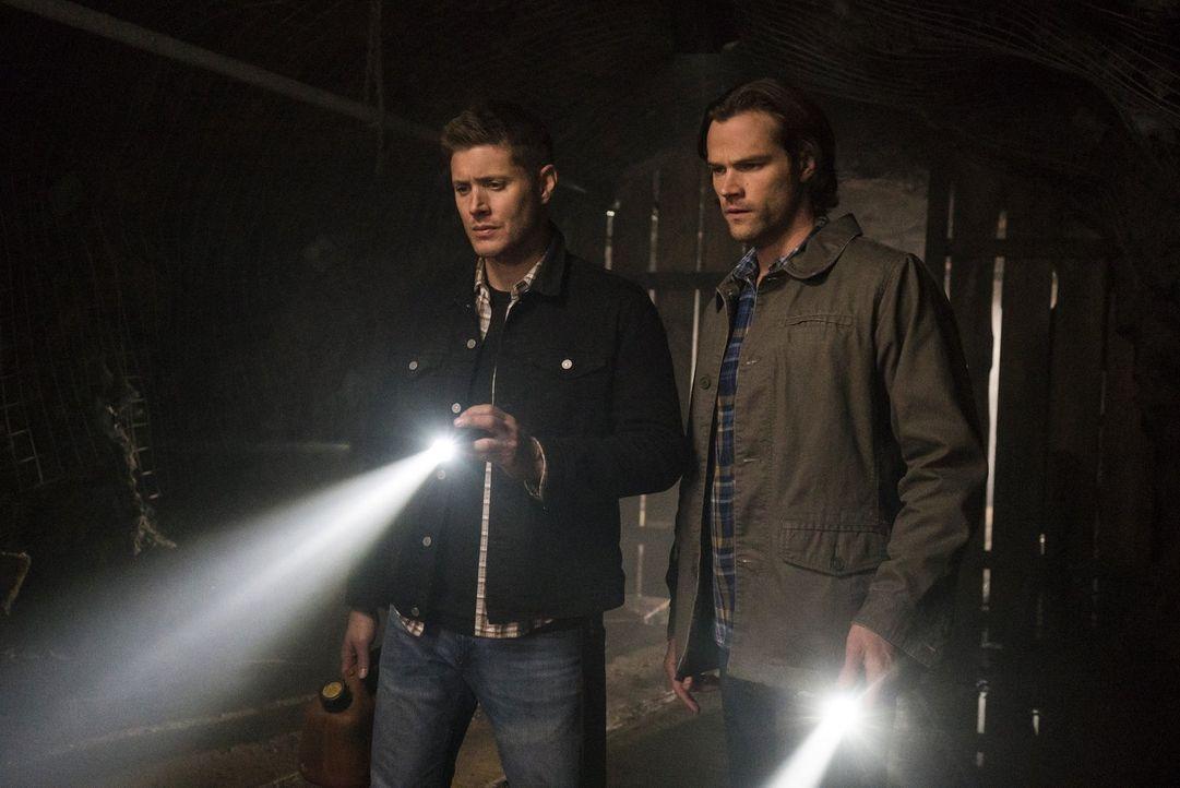 Wird es Dean (Jensen Ackles, l.) und Sam (Jared Padalecki, r.) gelingen, ein seltsames Phänomen in einer kleinen Ortschaft aufzuklären und gleichzei... - Bildquelle: 2014 Warner Brothers