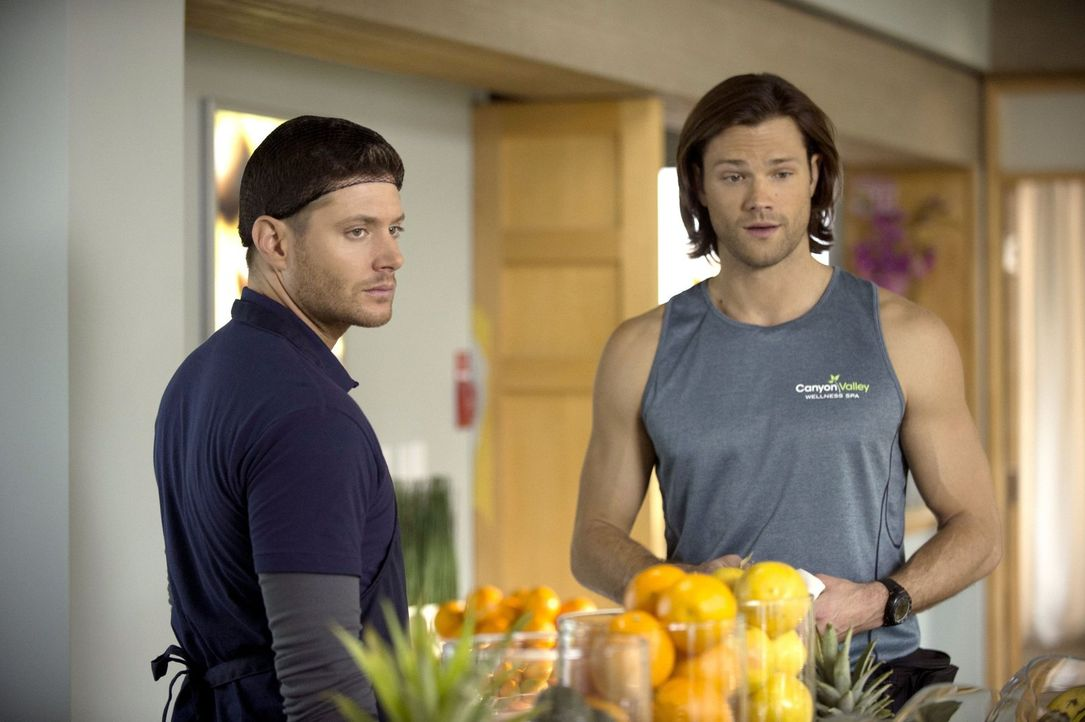 Dean (Jensen Ackles, l.) und Sam (Jared Padalecki, r.) ermitteln undercover in einem schicken Wellnesscenter - als Küchenhilfe und als Fitnesstraine... - Bildquelle: 2013 Warner Brothers