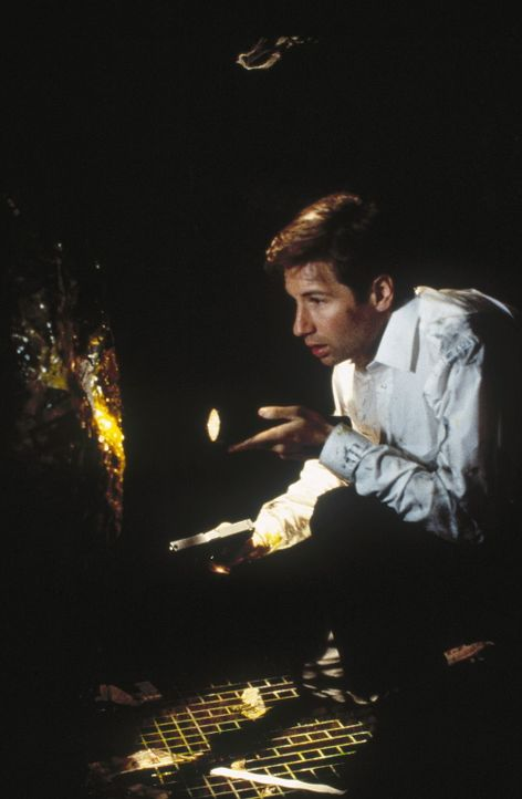 Auf der Suche nach eindeutigen Beweisen: Special Agent Mulder (David Duchovny) ... - Bildquelle: TM +   2000 Twentieth Century Fox Film Corporation. All Rights Reserved.