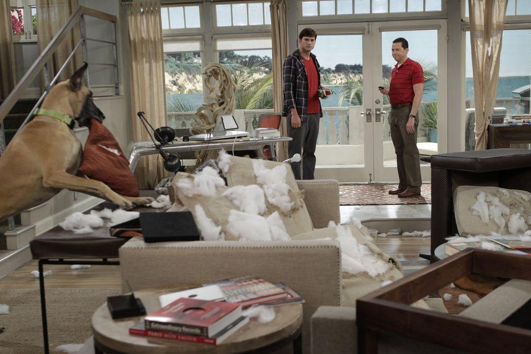 Was ist bloß bei Walden (Ashton Kutcher, l.) und Alan (Jon Cryer, r.) passiert? - Bildquelle: Warner Brothers Entertainment Inc.