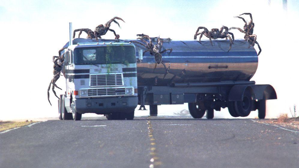 Arac Attack - Angriff der achtbeinigen Monster - Bildquelle: Warner Bros. Pictures