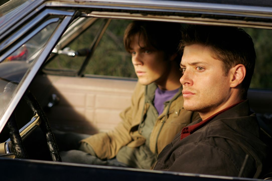 Mit gefälschten Ausweisen machen sich Dean (Jensen Ackles, r.) und Sam (Jared Padalecki, l.) auf die Suche nach einer Erklärung über das mysteriöse... - Bildquelle: Warner Bros. Television