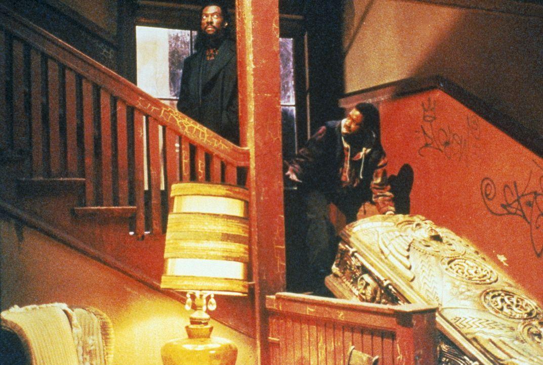 Beim Umzug vom Bermuda-Dreieck nach Brooklyn überträgt Maximillian (Eddie Murphy, l.) Julius (Kadeem Hardison, r.) eine eminent wichtige Aufgabe: de... - Bildquelle: Paramount Pictures