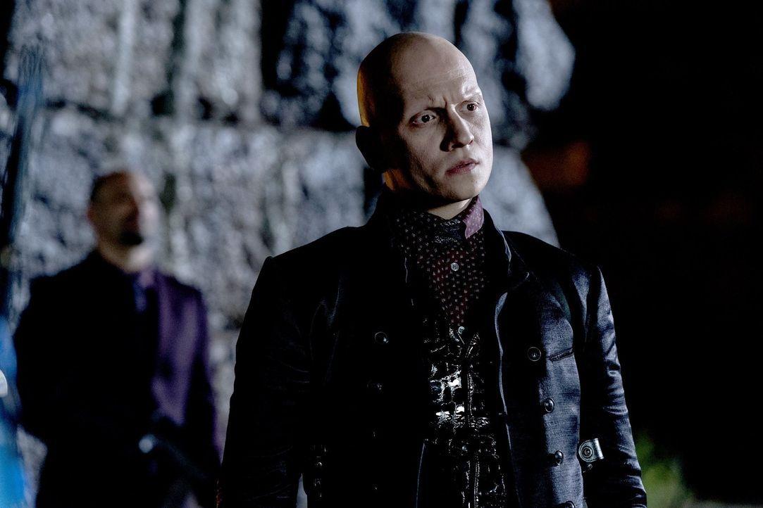 Victor (Anthony Carrigan) soll einige von Pinguins Feinden ausmerzen. Unterdessen baut Lee ihr Machtposition in den Narrows weiter aus ... - Bildquelle: 2017 Warner Bros.
