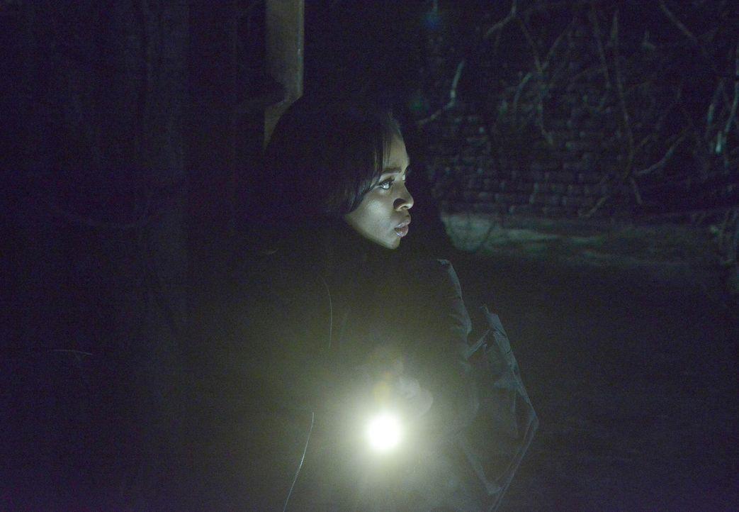 In den Tiefen des Tunnelsystems unter Sleepy Hollow stoßen Abbie (Nicole Beharie) und Ichabod auf mysteriöse Kreaturen ... - Bildquelle: 2014 Fox and its related entities. All rights reserved