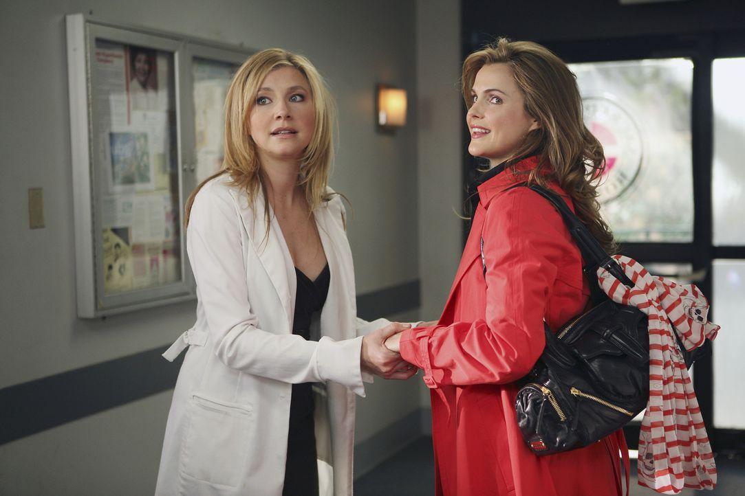 J.D. versucht Unfrieden zwischen Elliots (Sarah Chalke, l.) und ihrer alten College-Freundin Melody (Keri Russell, r.) zu stiften ... - Bildquelle: Touchstone Television