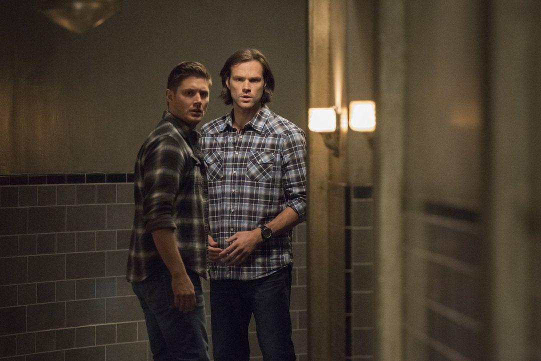 Ein ungewöhnlicher Mordfall erweckt Dean (Jensen Ackles, l.) und Sams (Jared Padalecki, r.) Aufmerksamkeit, vor allem, als sie feststellen, dass der... - Bildquelle: 2016 Warner Brothers