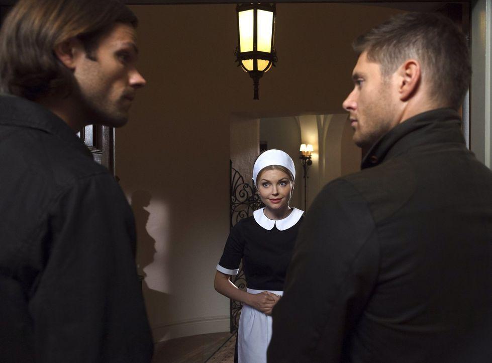 Eigentlich erhoffen sich Sam (Jared Padalecki, l.) und Dean (Jensen Ackles, r.) ein schönes Sümmchen, als sie erfahren, dass Bobby eine reiche Tante... - Bildquelle: 2016 Warner Brothers