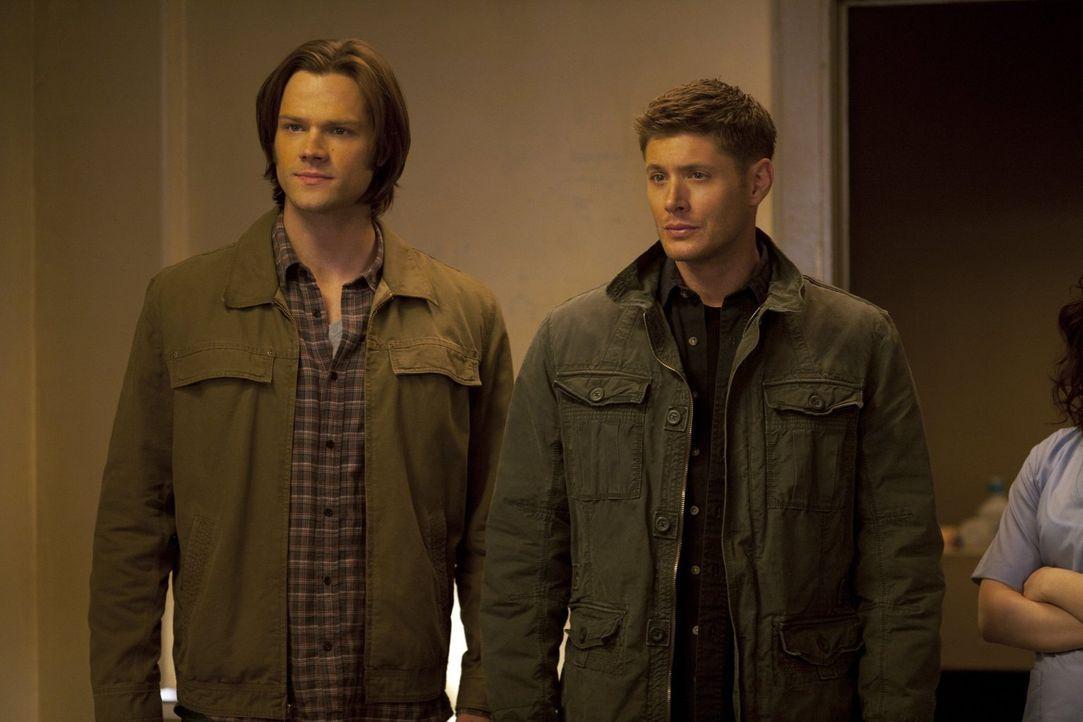Wieder stehen die Brüder Sam (Jared Padalecki, l.) und Dean (Jensen Ackles, r.) vor einem Rätsel. Seit einem starken Gewitter haben sich einige Pers... - Bildquelle: Warner Bros. Television