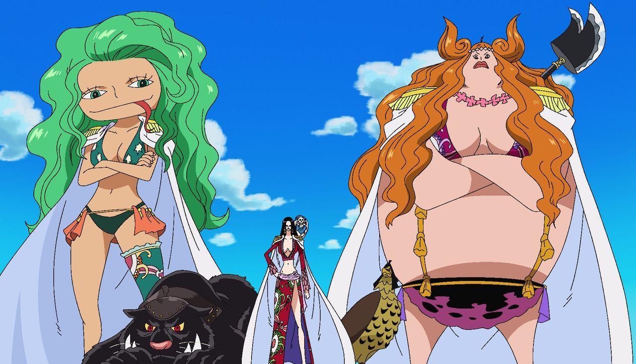 Während Ruffy auf der Insel der Frauen immer noch auf der Flucht ist, kehrt ... - Bildquelle: Eiichiro Oda/Shueisha, Toei Animation
