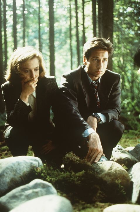 Bei ihren Ermittlungen am Okobogee-See, wo Ruby Morris verschwunden ist, stoßen Mulder (David Duchovny, r.) und Scully (Gillian Anderson, l.) auf me... - Bildquelle: TM +   Twentieth Century Fox Film Corporation. All Rights Reserved.