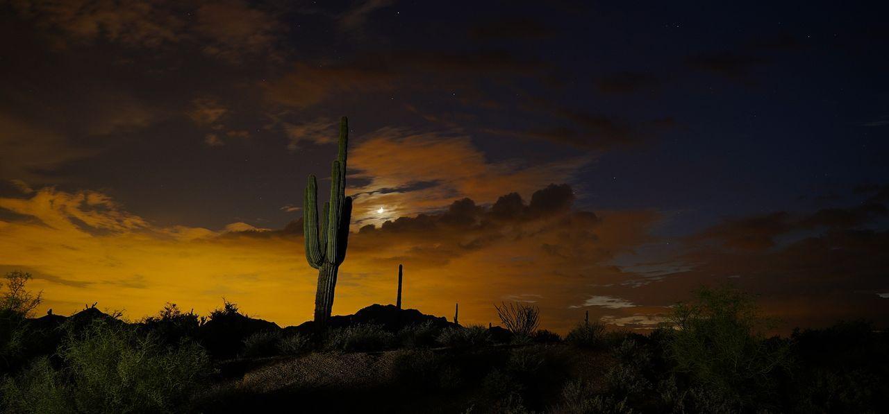 Auch die Wüste hat einiges zu bieten und präsentiert den Tornado Huntern formvollendete Sandstürme ...
