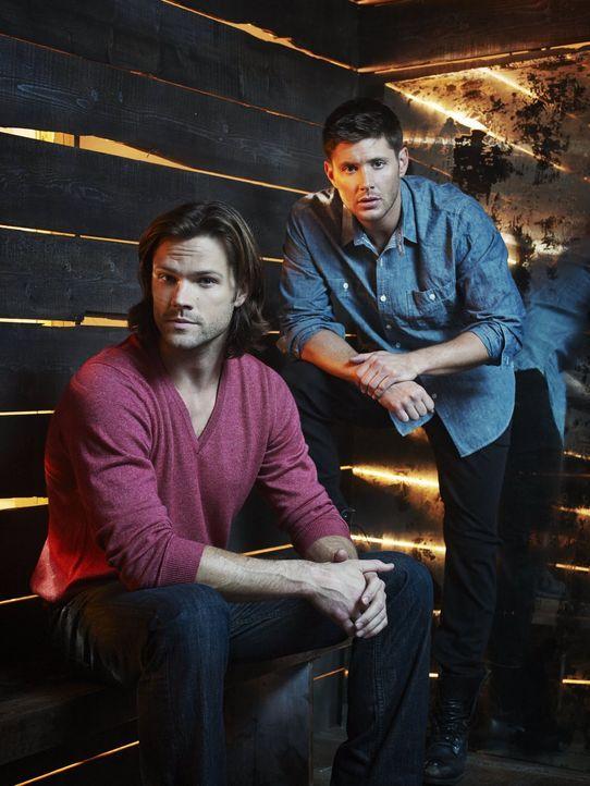 (9. Staffel) - Sam (Jared Padalecki, l.) und Dean (Jensen Ackles, r.) müssen sich einen Weg bahnen, in einer Welt, in der die Grenzen zwischen Gut u... - Bildquelle: 2013 Warner Brothers