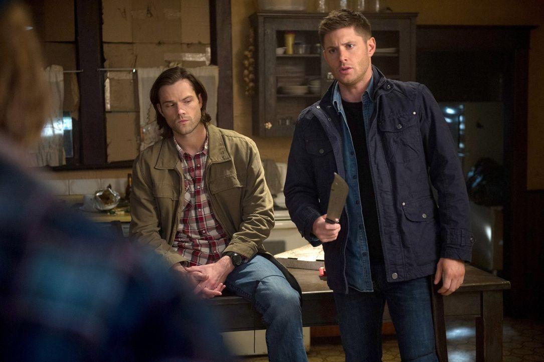 Sam (Jared Padalecki, l.) und Dean (Jensen Ackles, r.) erfahren etwas erschreckendes von einem der Vampir-Brüder ... - Bildquelle: 2013 Warner Brothers
