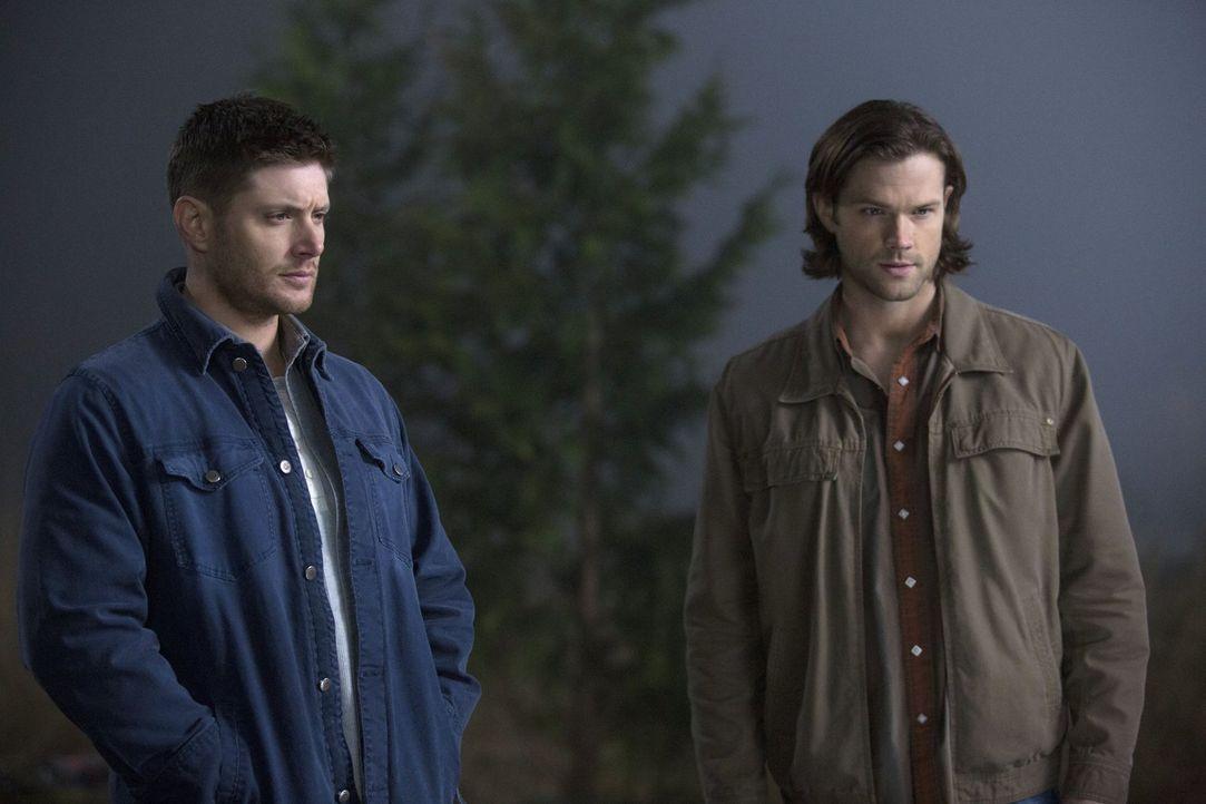 Sam (Jared Padalecki, r.) und Dean (Jensen Ackles, l.) sind geschockt, als sie sehen, in welchem Zustand sich Crowley befindet und setzten ihn auf e... - Bildquelle: 2013 Warner Brothers