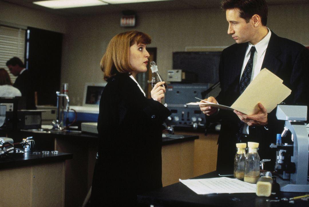 Mulder (David Duchovny, r.) und Scully (Gillian Anderson, l.) sind einem Geheimprojekt, bei dem Versuchspersonen außerirdische DNS eingepflanzt wurd... - Bildquelle: TM +   Twentieth Century Fox Film Corporation. All Rights Reserved.