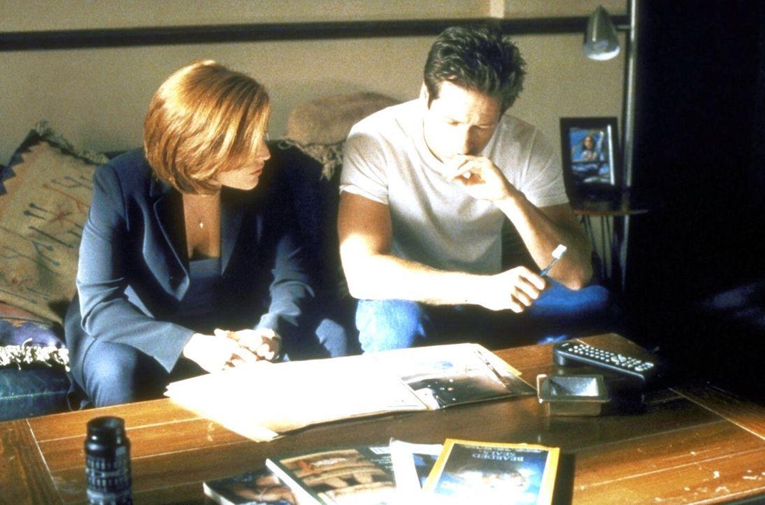 Scully (Gillian Anderson, l.) und Mulder (David Duchovny) kommen bei ihren Ermittlungen in einer mysteriösen Mordserie einfach nicht voran. - Bildquelle: TM +   2000 Twentieth Century Fox Film Corporation. All Rights Reserved.
