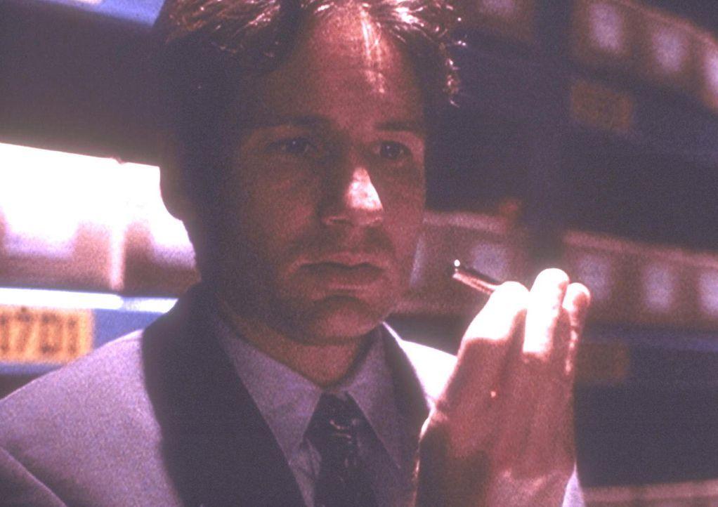 In einem geheimen Archiv des Pentagon findet Mulder (David Duchovny) ein vermeintliches Heilmittel gegen Krebs. - Bildquelle: TM +   Twentieth Century Fox Film Corporation. All Rights Reserved.