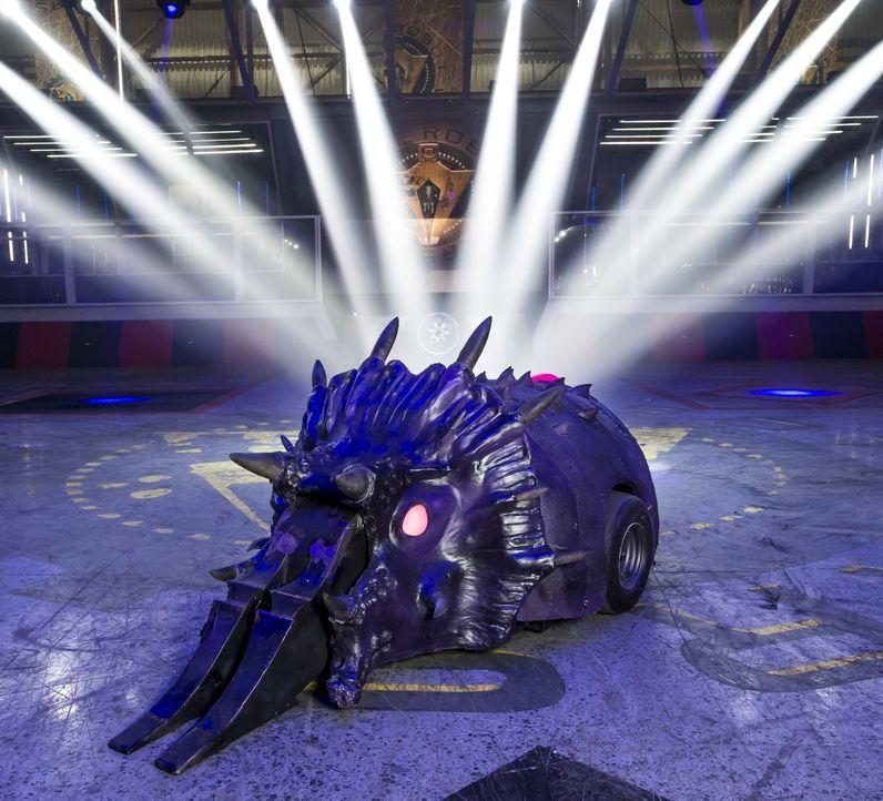 """Können die 40 Teams mit ihren selbst gebauten Robotern bei """"Robot Wars"""" nicht nur einander besiegen, sondern auch gegen den Hausroboter Matilda und... - Bildquelle: Alan Peebles Licensed by Passion Distribution Ltd. / Alan Peebles"""
