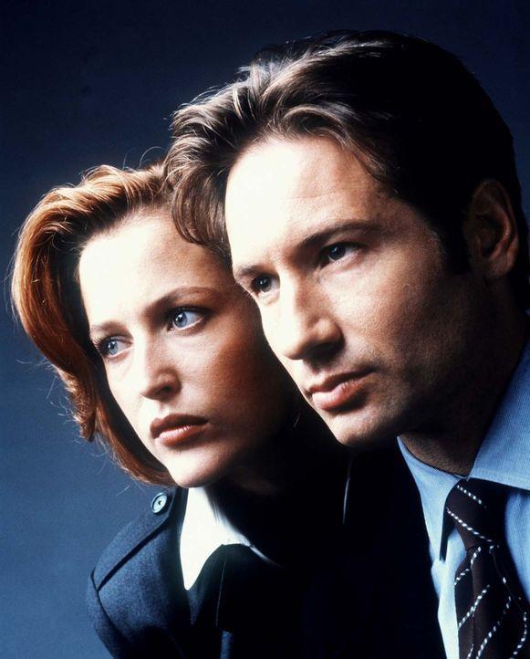 (7. Staffel) - Die FBI-Agenten Fox Mulder (David Duchovny, r.) und Dana Scully (Gillian Anderson, l.) erforschen ungewöhnliche Phänomene. - Bildquelle: TM +   2000 Twentieth Century Fox Film Corporation. All Rights Reserved.