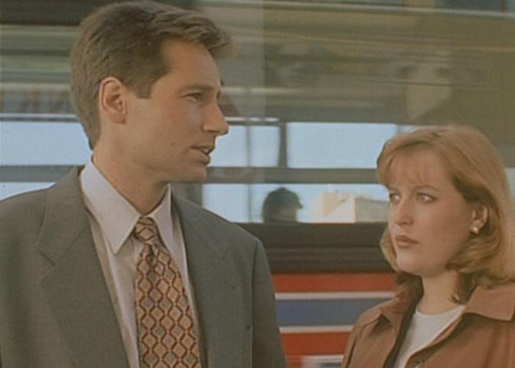 Mulder (David Duchovny, l.) und Scully (Gillian Anderson, r.) stellen fest, dass ein illegales Insektizid für die Mordserie in der Kleinstadt Frankl... - Bildquelle: TM +   Twentieth Century Fox Film Corporation. All Rights Reserved.