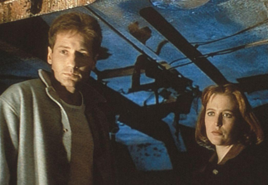 Scully (Gillian Anderson, r.) und Mulder (David Duchovny, l.) sind an Bord eines amerikanischen Kriegsschiffes, das eine Zeitreise gemacht hat und n... - Bildquelle: TM +   Twentieth Century Fox Film Corporation. All Rights Reserved.