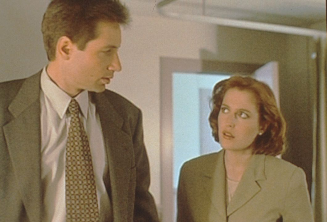 Mulder (David Duchovny, l.) und Scully (Gillian Anderson, r.) ermitteln im Todesfall eines zweijährigen Jungen, der zunächst wie ein tragisches Ungl... - Bildquelle: TM +   2000 Twentieth Century Fox Film Corporation. All Rights Reserved.