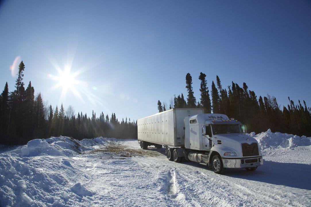Auf spiegelglatter Fahrbahn geht es für die Trucker heute um Leben und Tod. ... - Bildquelle: 2015 A+E Networks, LLC