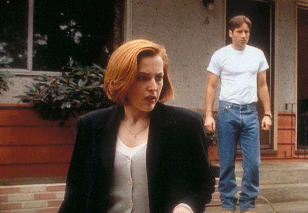Mulder (David Duchovny, r.) wird verdächtigt, ein Ehepaar umgebracht zu haben, doch Scully (Gillian Anderson, l.) ist von seiner Unschuld überzeugt... - Bildquelle: TM +   2000 Twentieth Century Fox Film Corporation. All Rights Reserved.