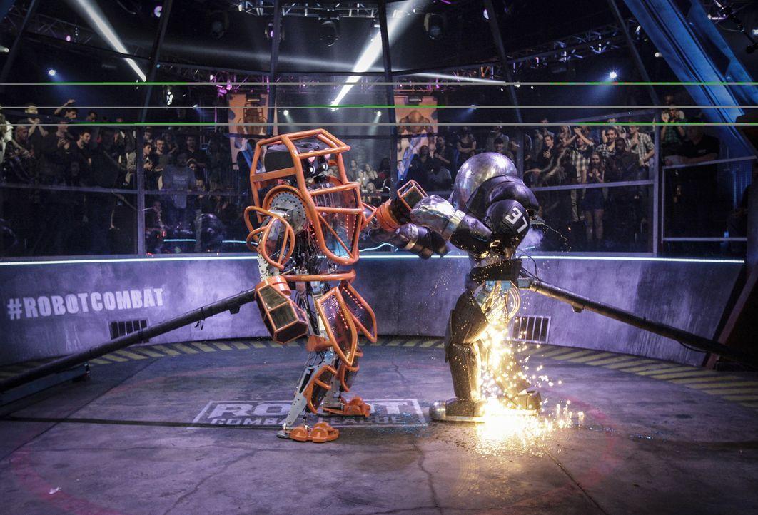 """In der """"Robot Combat League"""" messen sich die Könige der mechanischen Kampf-Kunst. Welches Team wird sich durchsetzen? - Bildquelle: Nicole Wilder 2012 Syfy Media LLC"""