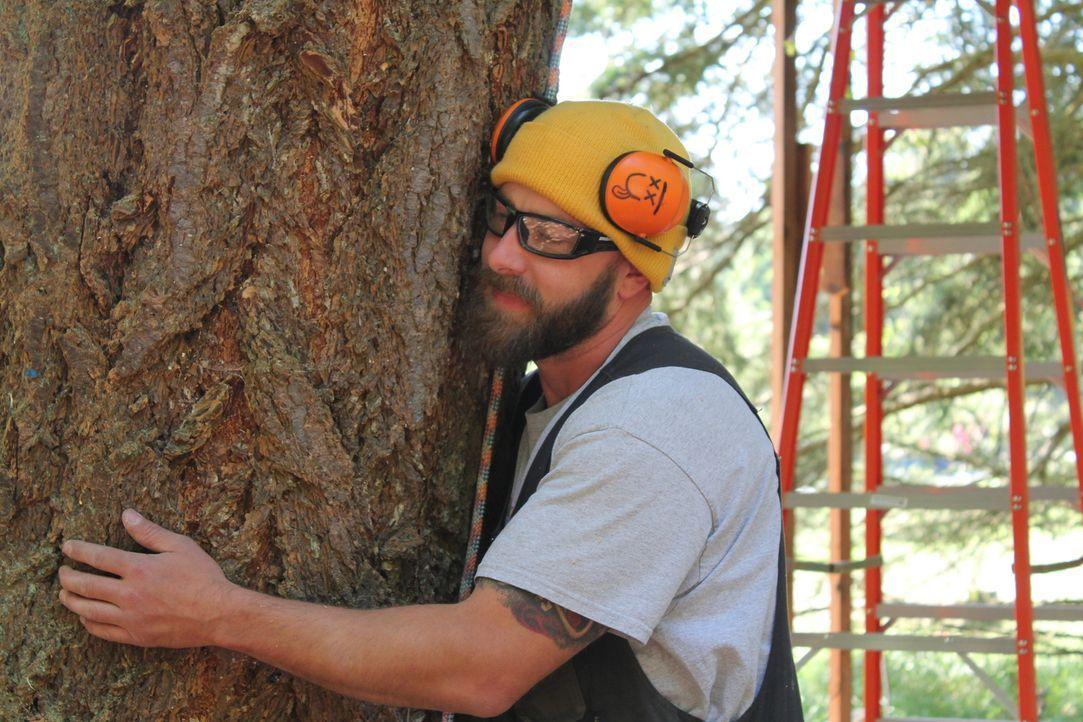 Die Liebe zur Natur hilft Ka-V und den anderen Treehouse Guys, neue Ideen zu entwickeln und mit vollem Elan bei der Arbeit dabei zu sein ... - Bildquelle: 2015, DIY Network/Scripps Networks, LLC. All Rights Reserved.