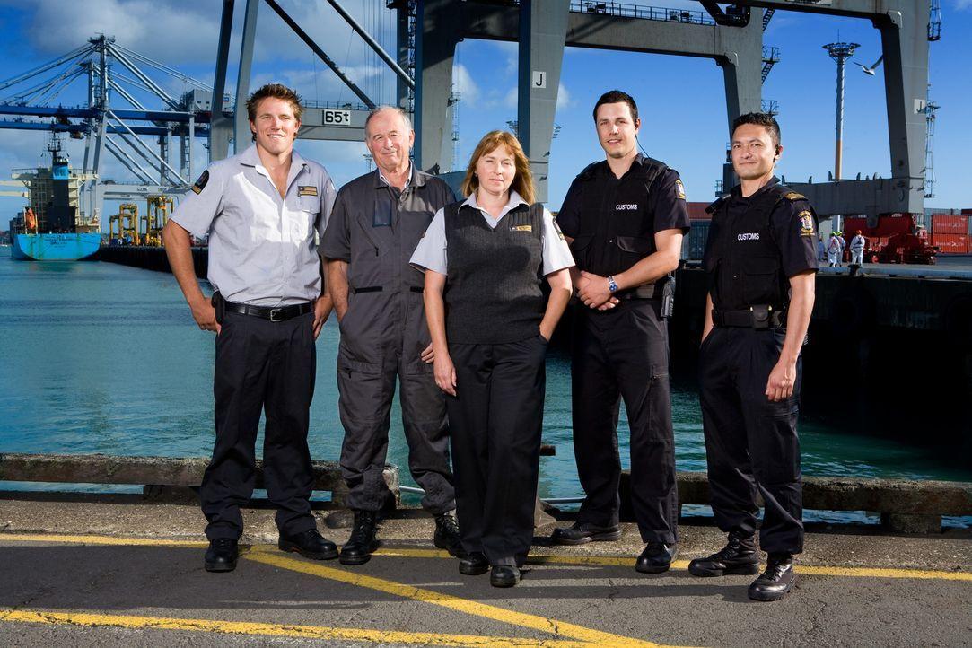 Bei tausenden Reisenden täglich haben die Zollbeamten an der neuseeländischen Grenze alle Hände voll zu tun ...