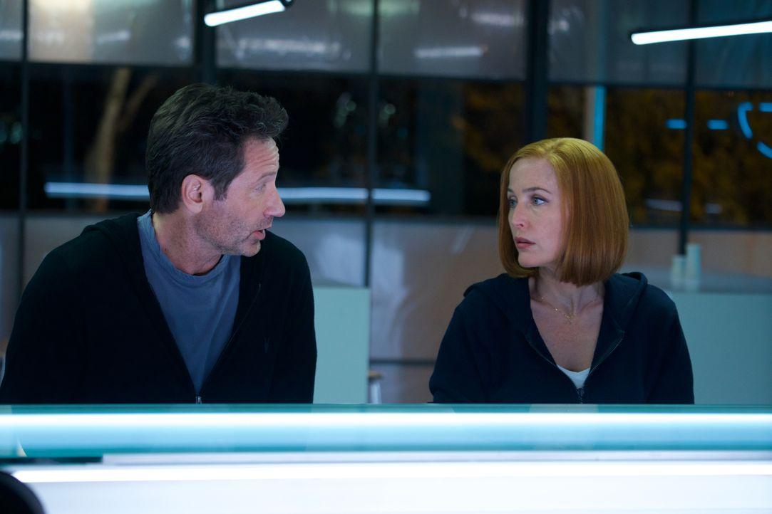 Mulder (David Duchovny, l.) und Scully (Gillian Anderson, r.) müssen sich mit künstlicher Intelligenz und zunehmender Automatisierung der Welt ausei... - Bildquelle: Shane Harvey 2018 Fox and its related entities. All rights reserved. / Shane Harvey