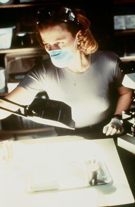 Eine schreckliche Seuche hat bereits 18 Menschen das Leben gekostet. Scully (Gillian Anderson) setzt alles daran, den Verursacher ausfindig zu mache... - Bildquelle: TM +   2000 Twentieth Century Fox Film Corporation. All Rights Reserved.