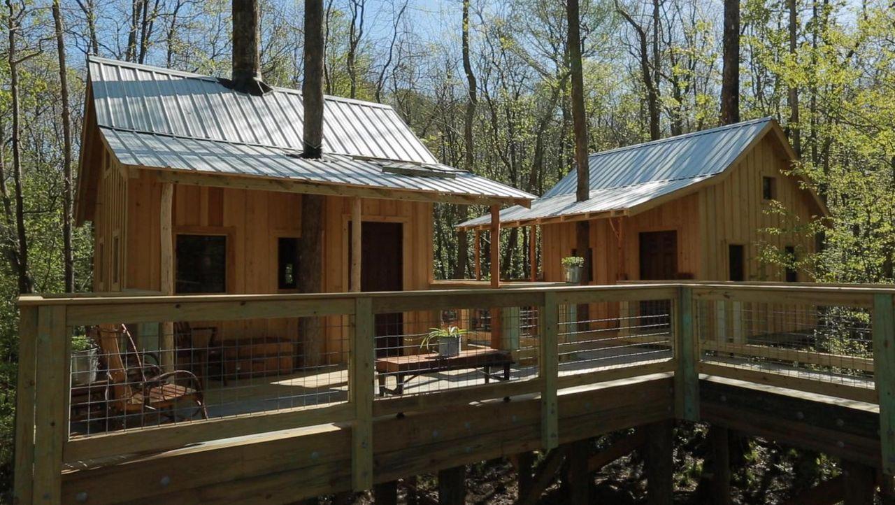 Was wird die Windsor-Community zu den besonderen Baumhäusern im Sumpfgebiet des Cashie Rivers sagen? - Bildquelle: 2016,DIY Network/Scripps Networks, LLC. All Rights Reserved