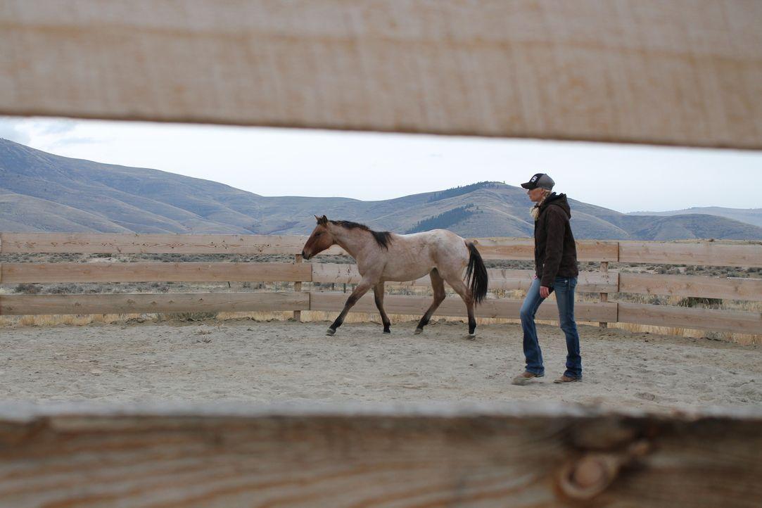 Der Winter kommt schneller als gedacht. Werden Etta (Foto) und ihr Mann Jon ihre Ranch noch rechtzeitig fertigstellen können? - Bildquelle: 2016,DIY Network/Scripps Networks, LLC. All Rights Reserved